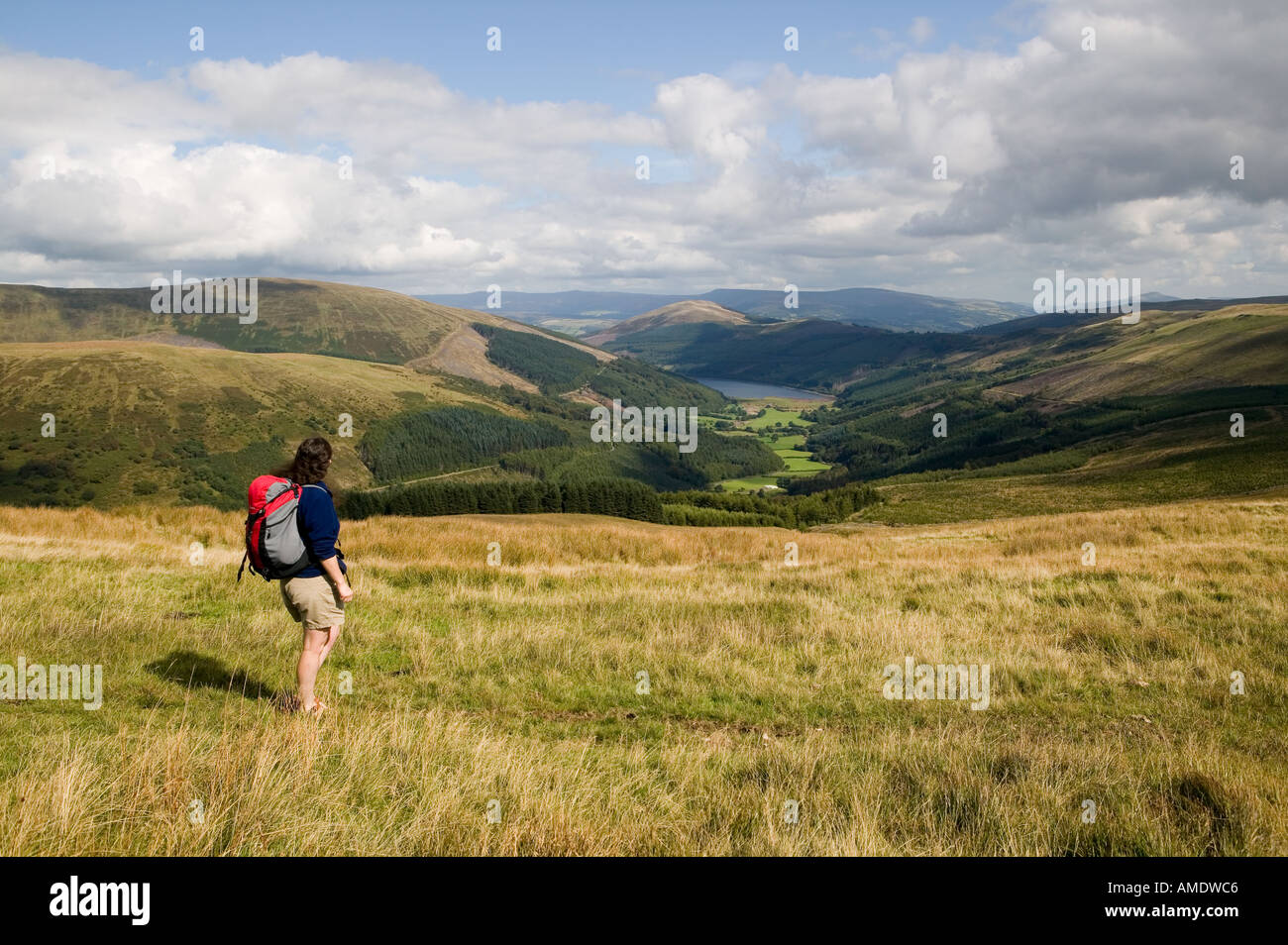 Female hiker walking on Pant y Creigiau looking over Glyn Collwn and Talybont reservoir Brecon beacons Wales UK - Stock Image