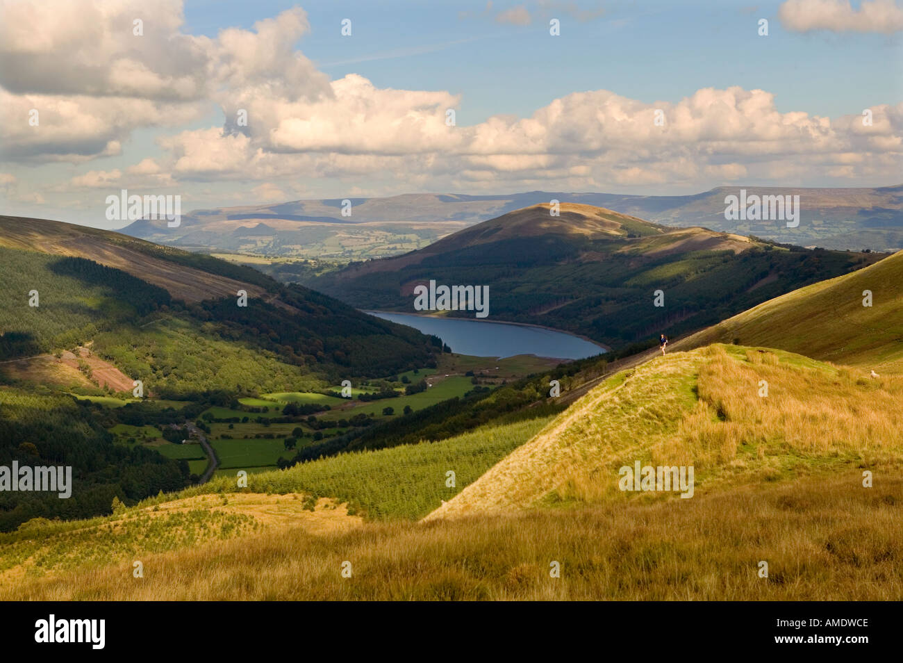 Female hiker on Pant y Creigiau looking over Glyn Collwn and Talybont reservoir Brecon beacons Wales UK - Stock Image