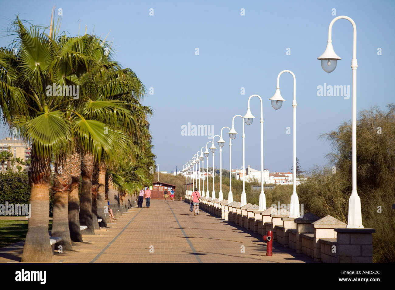 Street lights and palm trees line a promenade walk in the Spanish costal area of Islantilla Stock Photo