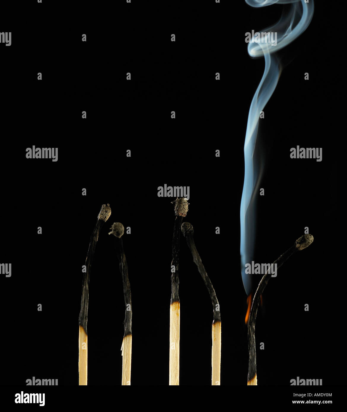 ROW OF FIVE BURNT MATCHES WITH SINGLE MATCH SMOULDERING - Stock Image