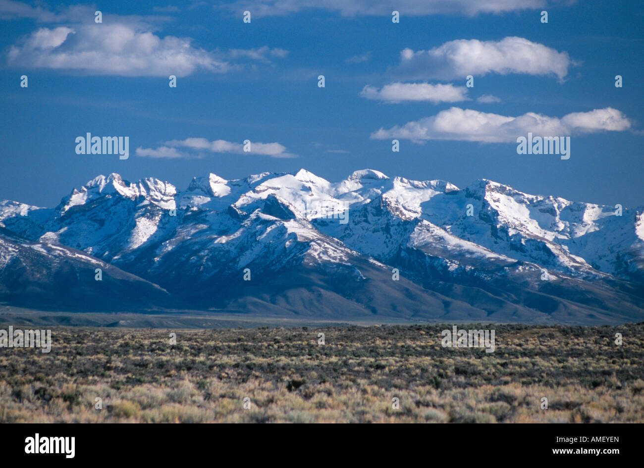 ruby mountains in springtime nevada usa stock photo: 15243932 - alamy