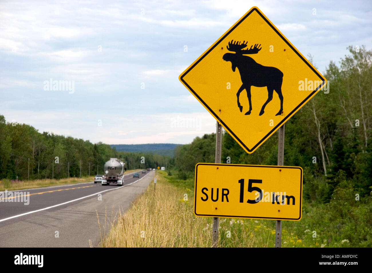 moose crossing sign along highway stock photos moose crossing sign