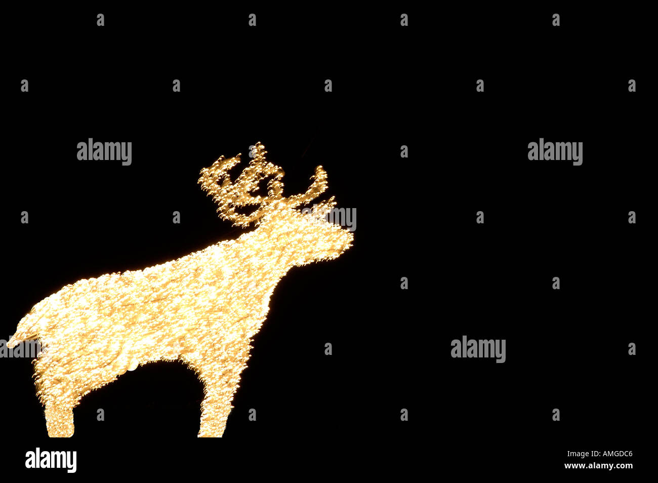 Reindeer white lights Toronto Canada against black sky - Stock Image