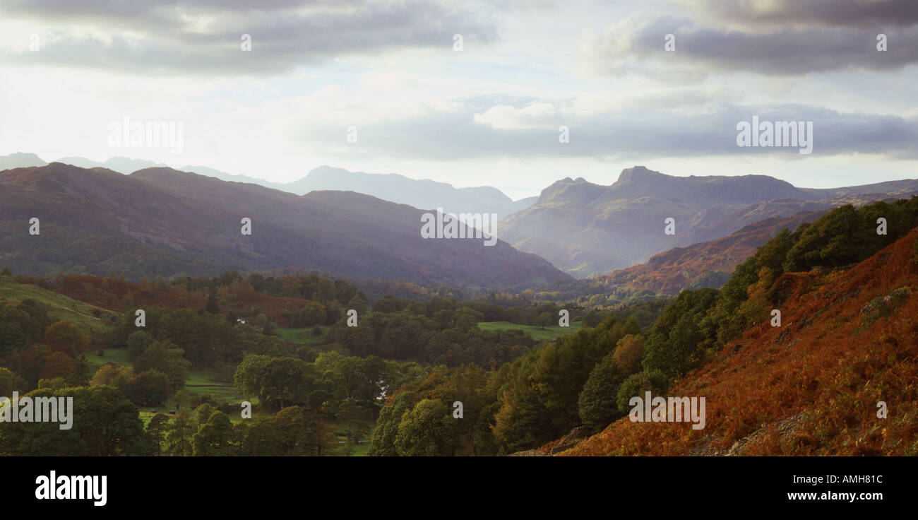 Elterwater Great Langdale Lake District National Park Cumbria Stock Photo
