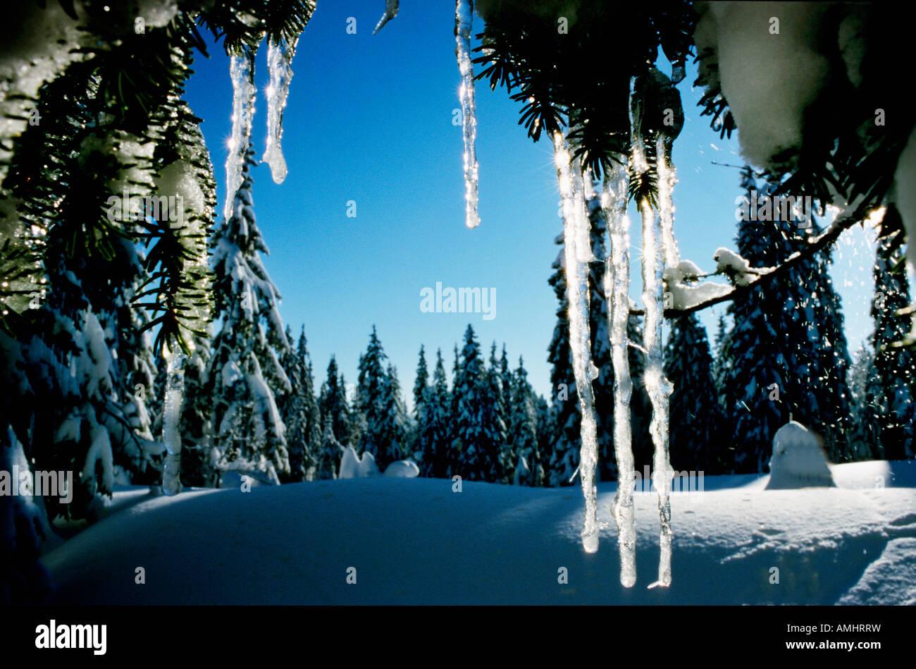 paysage de neige WINTER SCENE SWITZERLAND Alps Aeschiried Alps Bern Bernese Canton Europe European Niesen Oberland - Stock Image