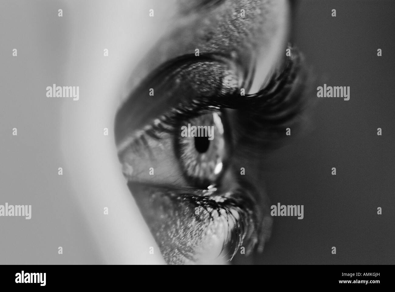 Black and white image of an human eye stock image