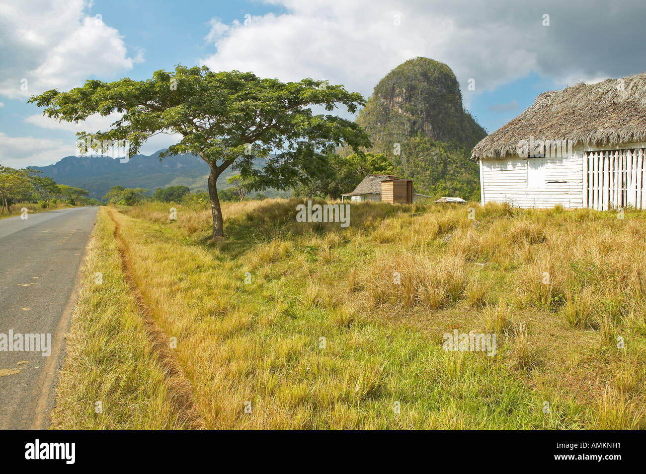 The Valle de Viñales in central Cuba - Stock Image