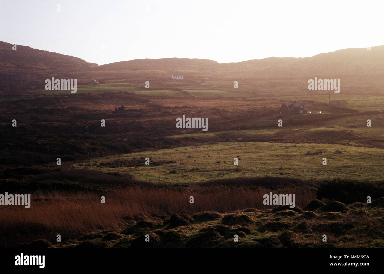Douro, near Goleen overlooking Dunmanus Bay, West Cork, Ireland - Stock Image