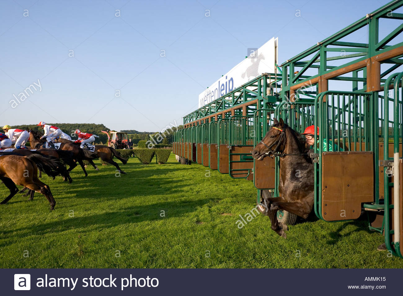 Horseracing Racecourse Racetrack Race Start Late Starter Box Machine Jockey Stable Colours Silk Gallop Speed Grass Turf