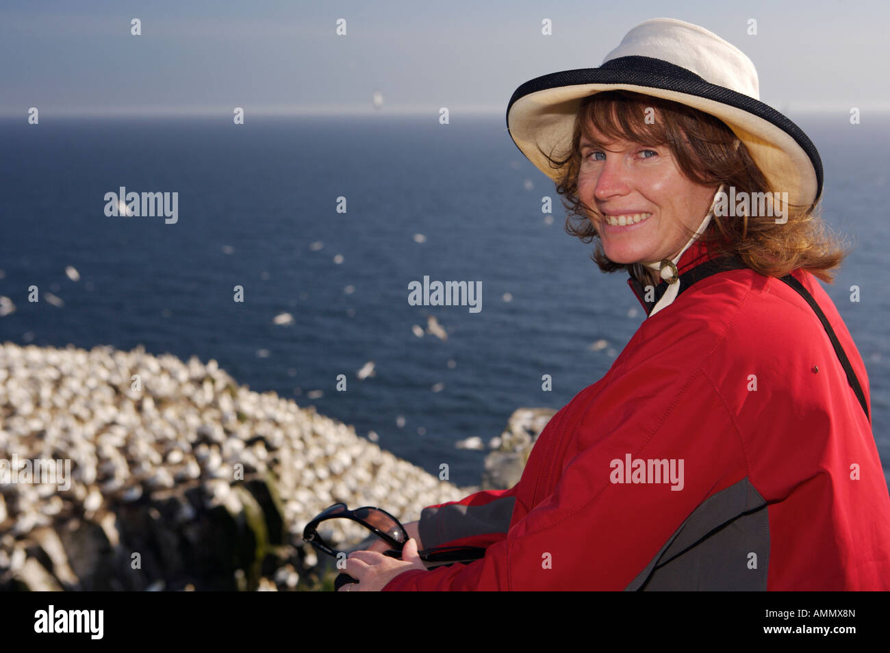 Tourist visiting the Northern Gannet Colony on Bird Rock at the Cape St Mary's Ecological Reserve, Canada. - Stock Image