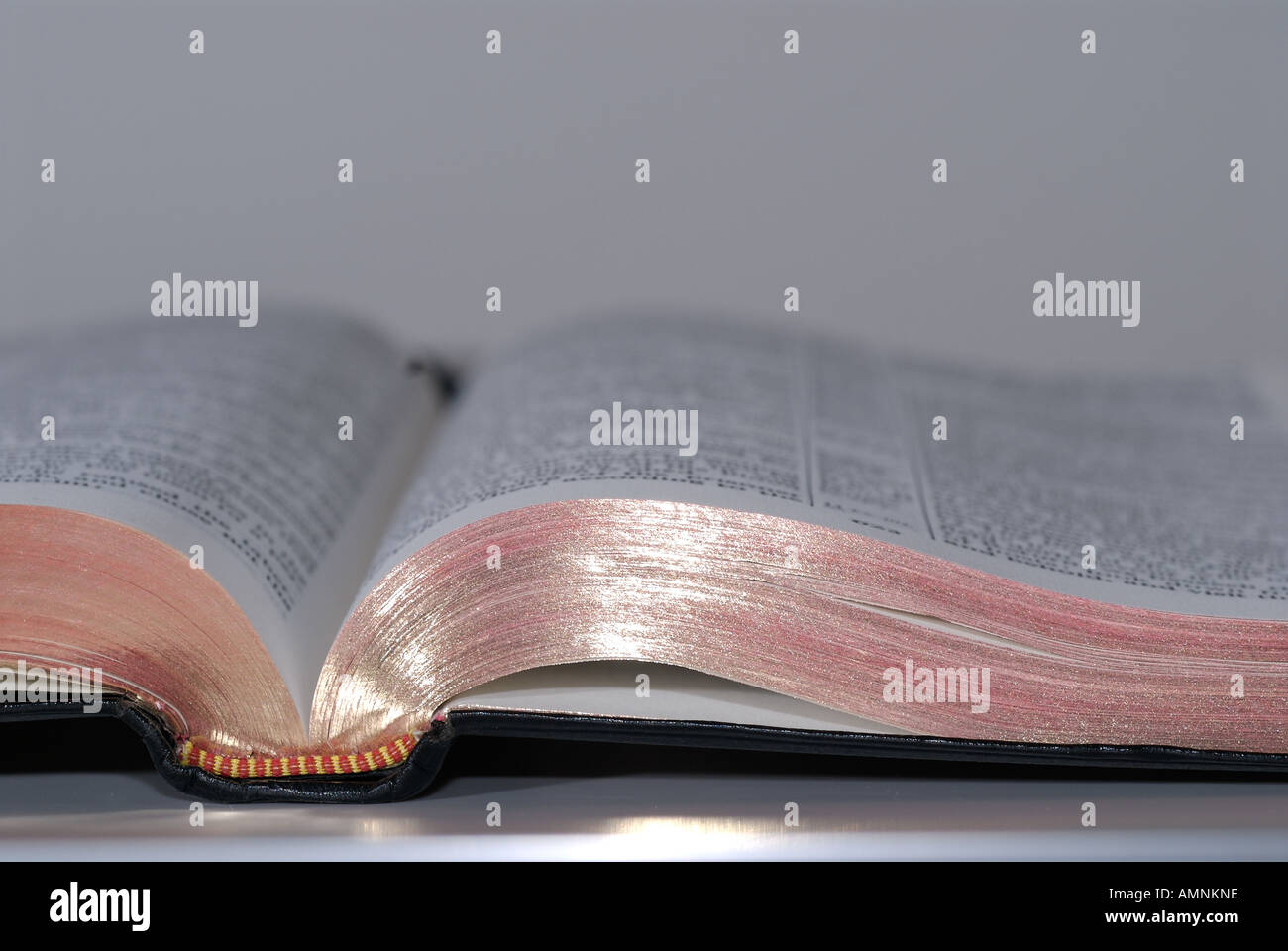 Bible scripture - Stock Image