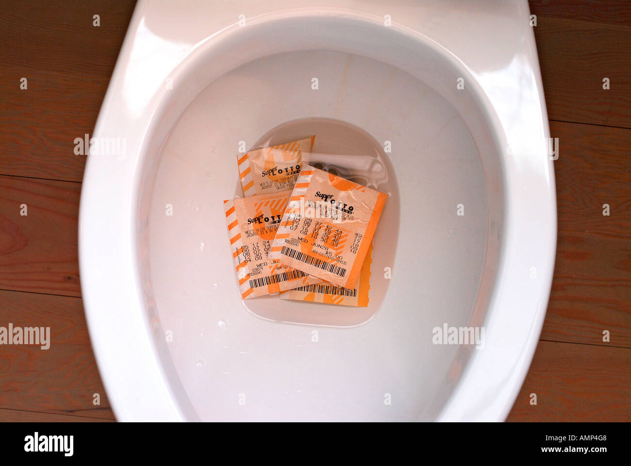 California ^superlotto ^lottery ^ticket down the toilet Stock Photo
