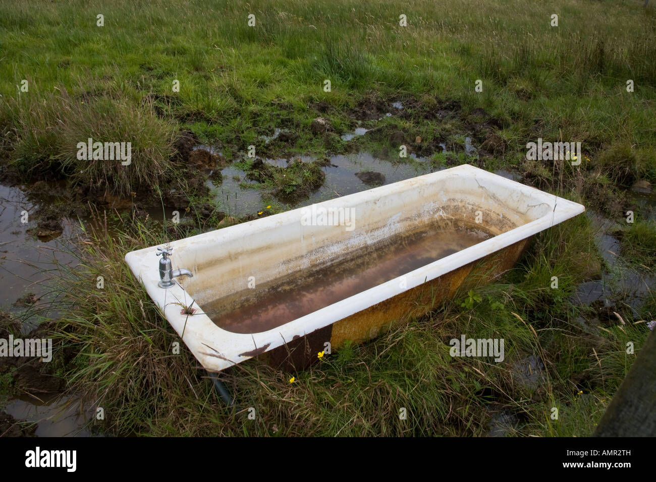 An old bathtub filled with water in a field on the Isle of Skye ...