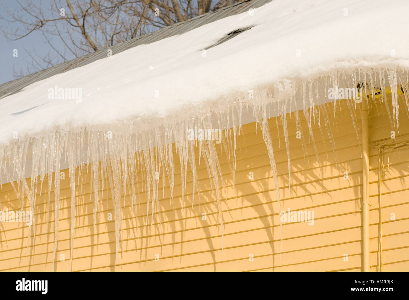 Icickes on houses in Fredericton - Stock Image