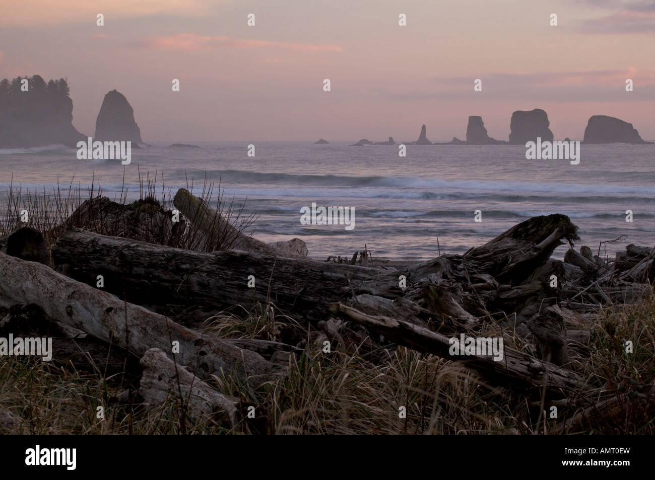 Olympic National Park, La Push, first Beach, Olympic Peninsula, Washington, USA, North America. - Stock Image