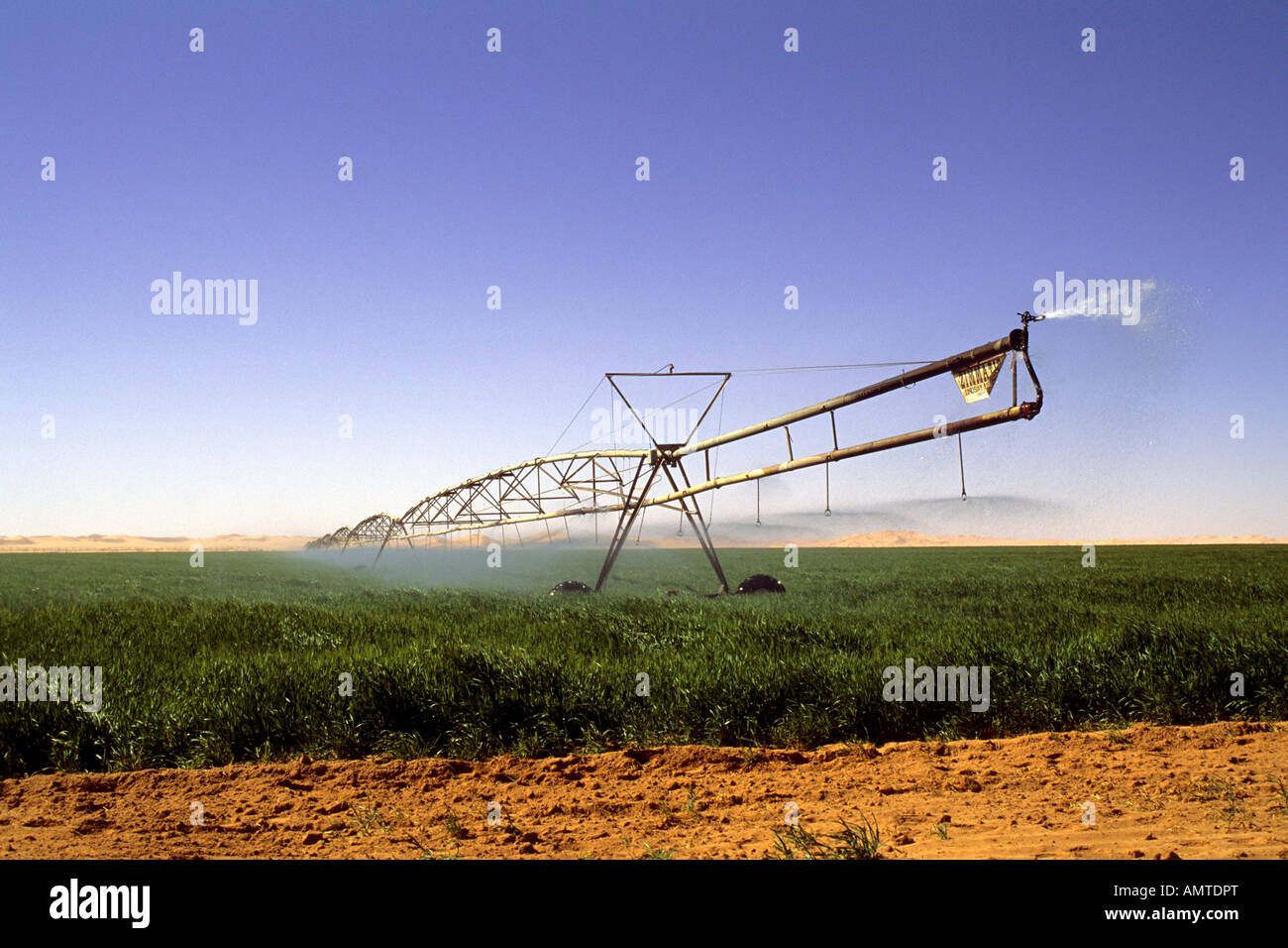 Irrigating a man-made oasis in the Libyan desert - Stock Image