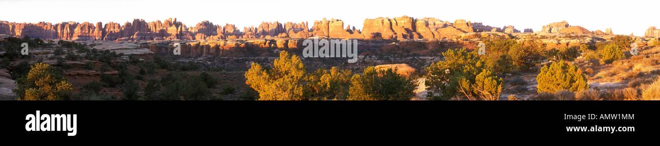 Needles Panorama in Canyonland National Park - Stock Image