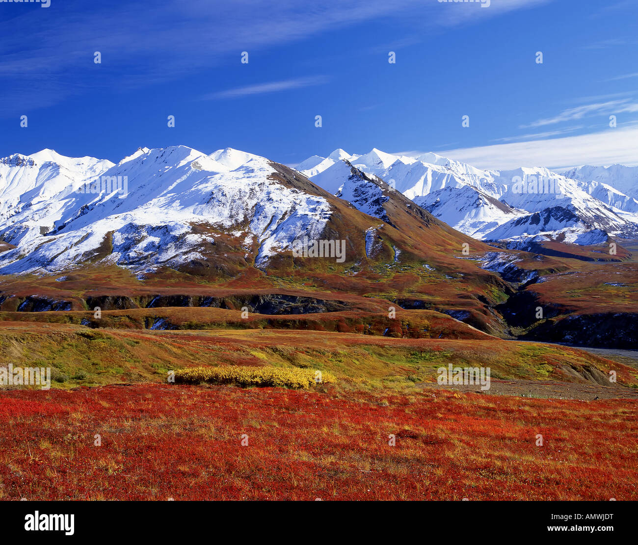Escort Passport 9500ix >> Picture Of A Tundra | Autos Post