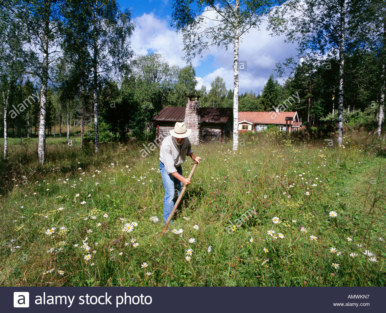 Man working in the garden - Stock Image