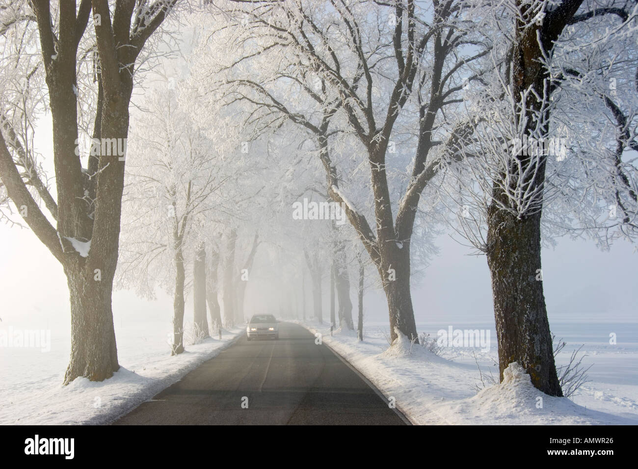 alley with car in winter at snow whitefrost and mist Bavaria Germany Stock Photo