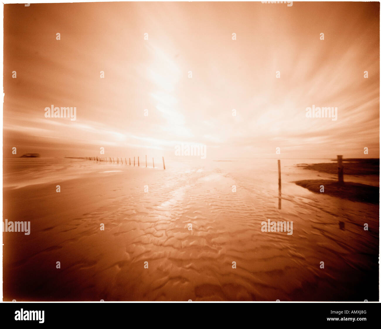 Silhouette of wooden posts on beach, Schleswig-Holstein, Germany - Stock Image