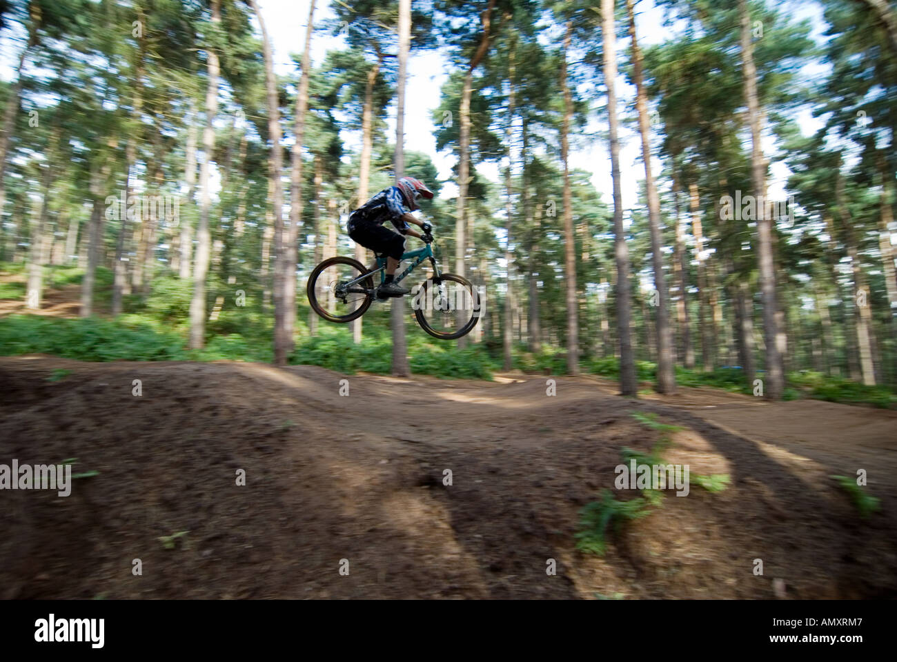 PICTURE CREDIT DOUG BLANE Beds Fat Trax Mountain Biking at the bike park at Rowney Warren Chicksands Bedfordshire Stock Photo