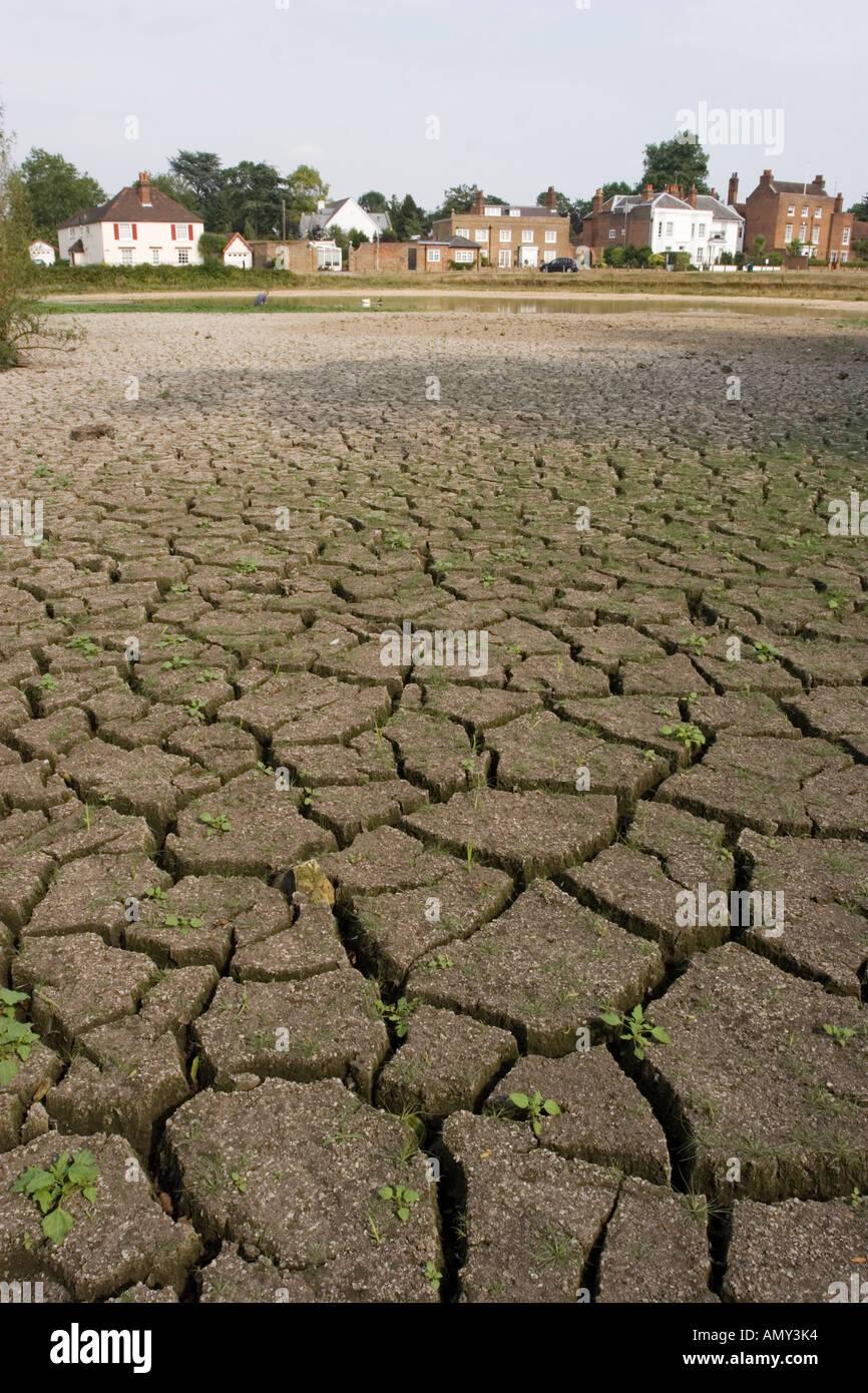 Heatwave July 2006 - Gerrards Cross Pond - Buckinghamshire - Stock Image