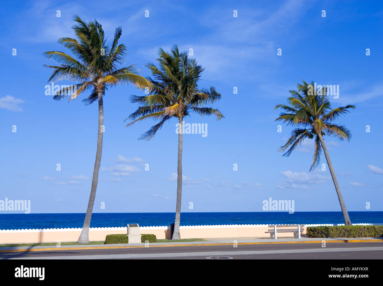 Boardwalk along water in Palm Beach, Florida, USA - Stock Image