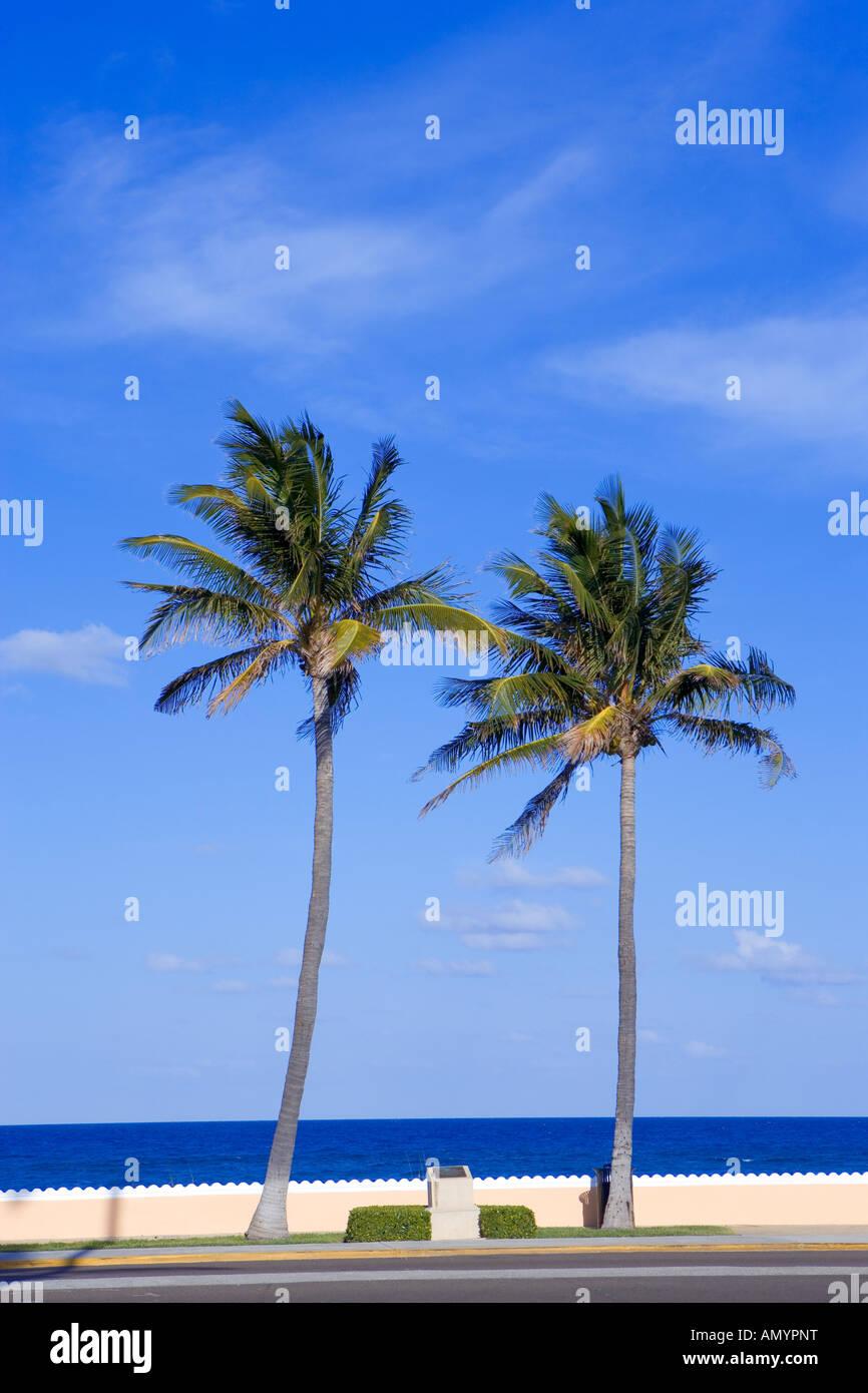 boardwalk along beach in Palm Beach, Florida, USA - Stock Image