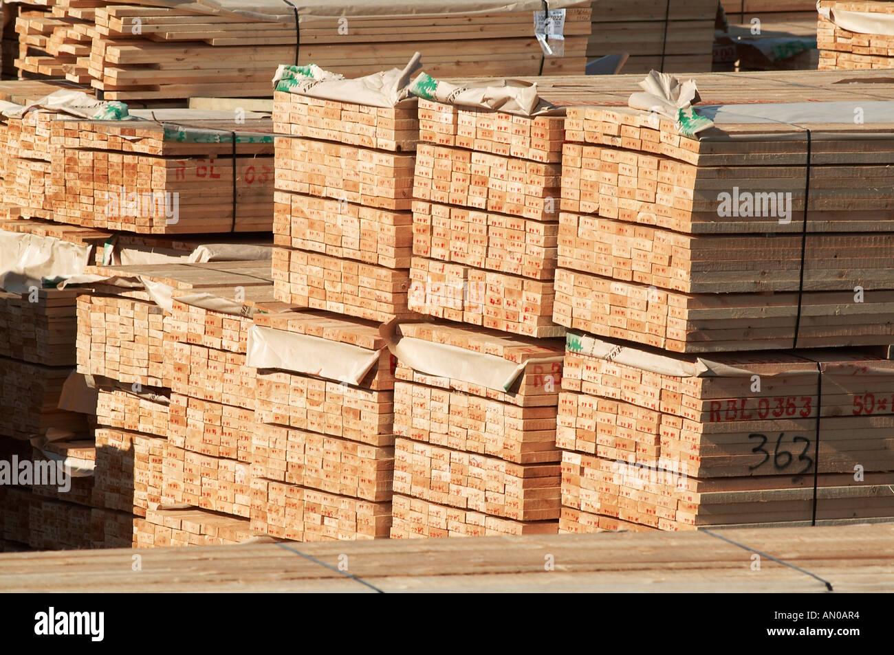 Timber wood lumber yard pine tree deforestation for Pine tree timber