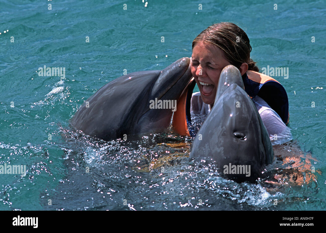 Young woman swimming with dolphins near Guadarlavaca Holguin province Cuba Receiving a kiss on the cheeks from two dolphins - Stock Image