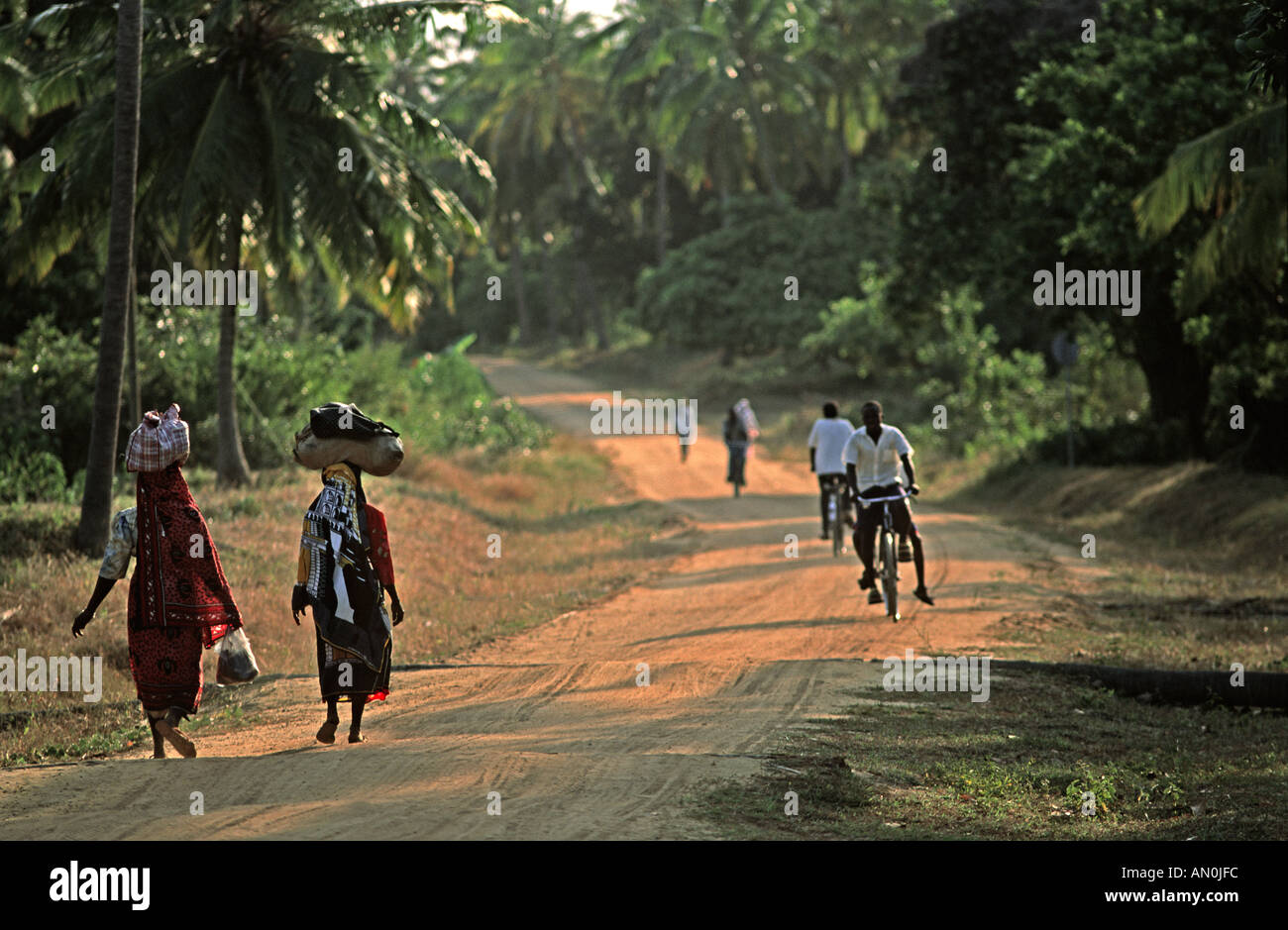 Rural scene on Mafia island Woman Islanders walking down the road in the late afternoon Kilindoni to Utende Road Tanzania - Stock Image