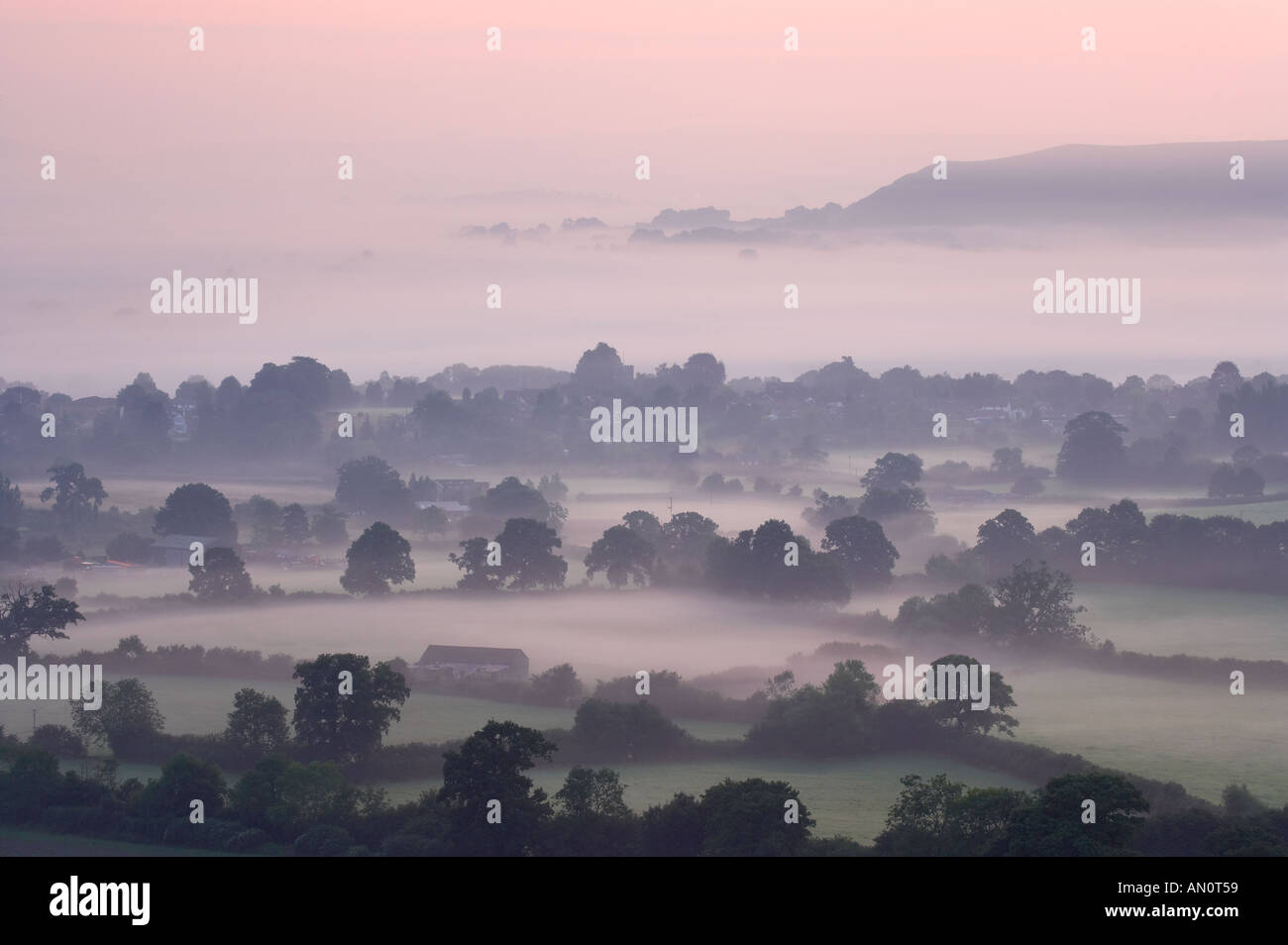 a misty dawn in the Blackmore Vale from Bulbarrow Hill nr Okeford Fitzpaine Dorset England UK - Stock Image