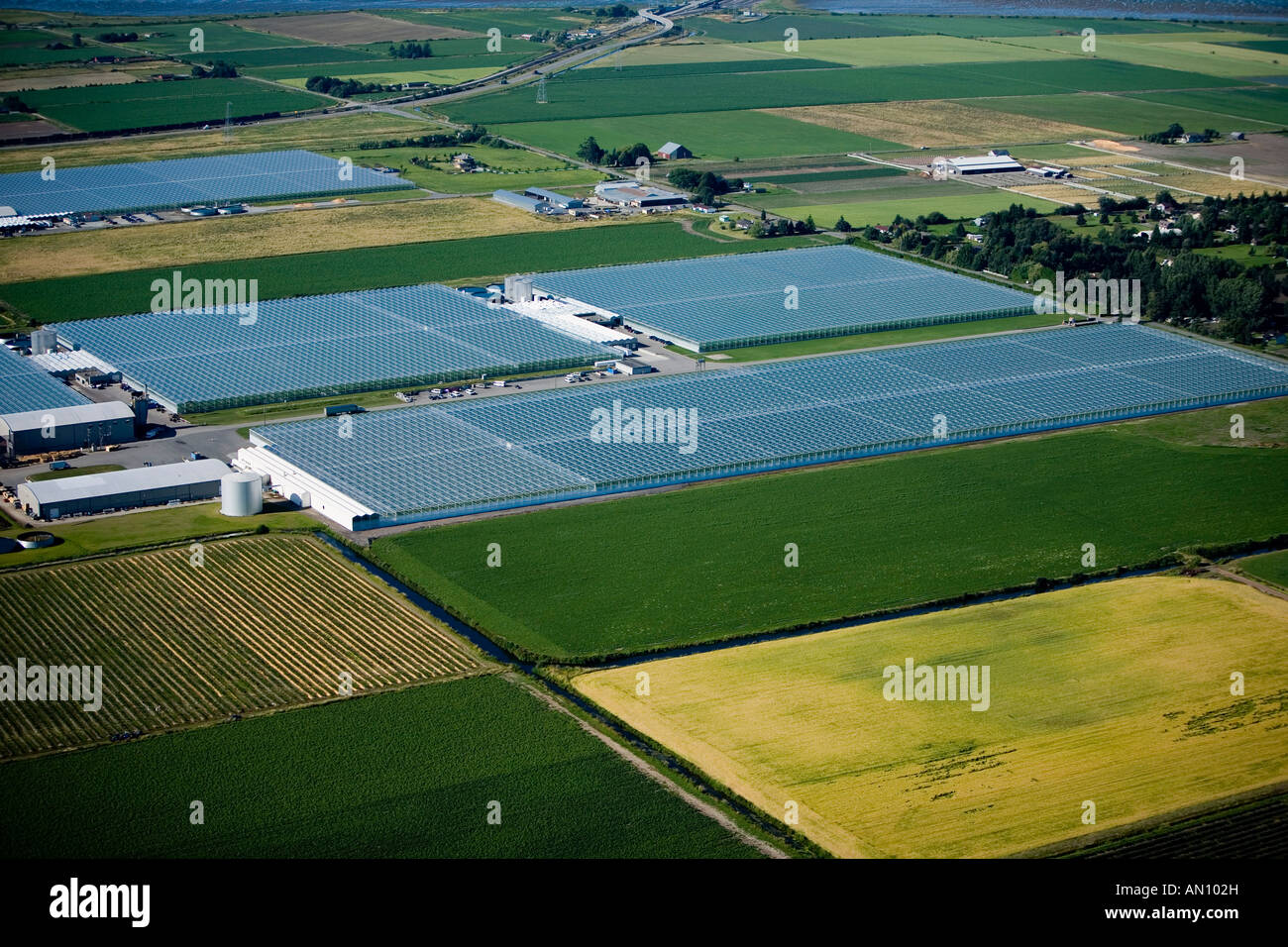 Greenhouses, British Columbia, Canada - Stock Image