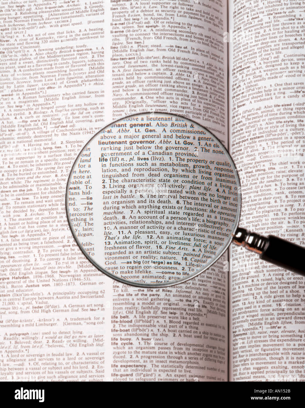 Magnifying glass over definition of the word life in american magnifying glass over definition of the word life in american english language dictionary ccuart Choice Image