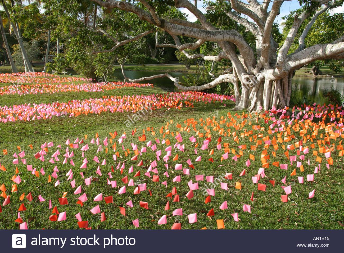 Coral Gables Miami Florida Fairchild Tropical Botanic Garden Flower