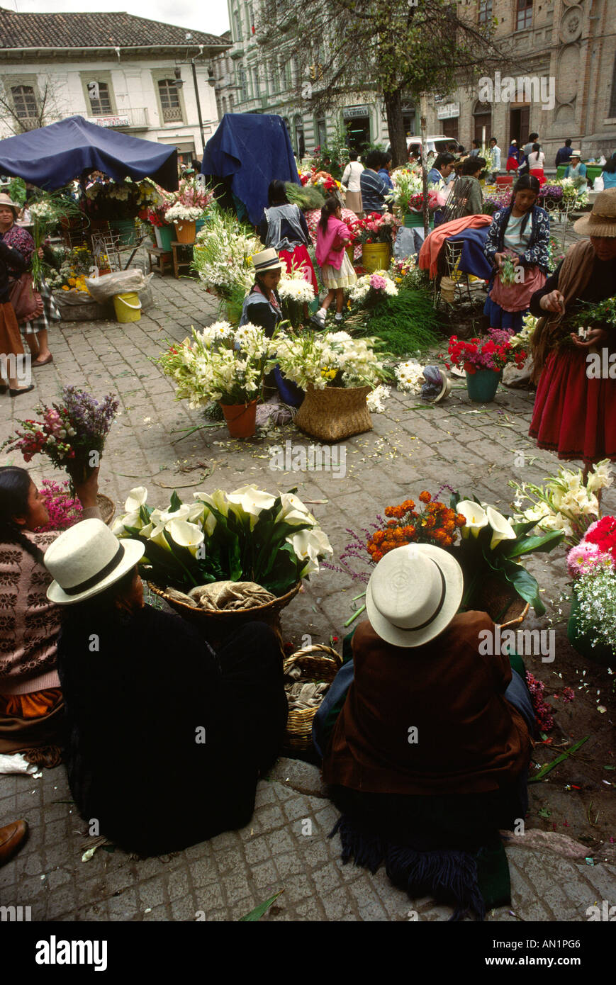cuenca single girls A place to meet other single expats iam a 55yrold, single, female there are now  many single females travelling and living in ecuador especially in cuenca.