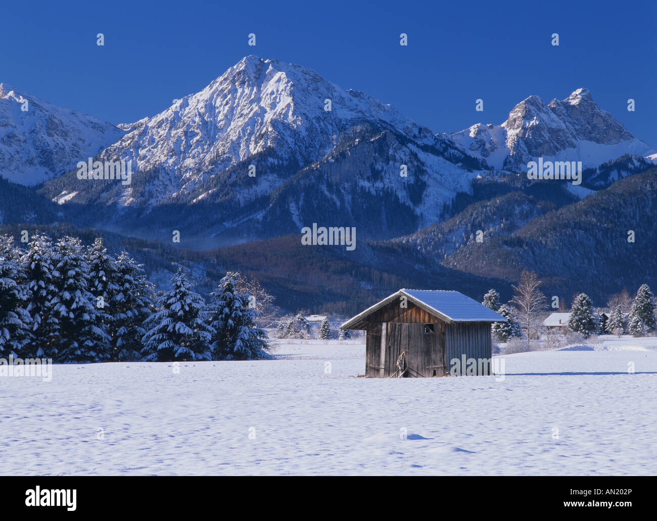hut and snow covered mountains near Fuessen Allgaeu Bavaria Germany - Stock Image