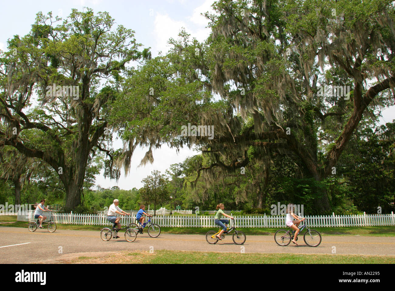 Louisiana St  Tammany Parish Fairview Riverside State Park Stock