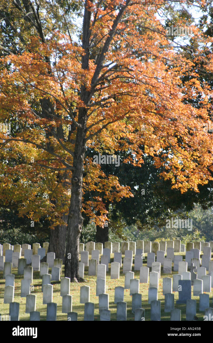 North Carolina, South, Tar Heel State, Wake County, Raleigh, Oakwood cemetery, burial ground, death, 2,800+ Confederate Stock Photo