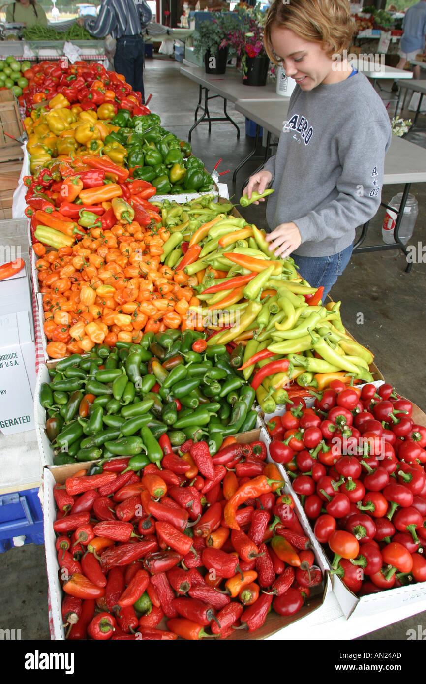 North Carolina, South, Tar Heel State, Wake County, Raleigh, State Farmers Market, farmer's, farmers', fruit, vegetable, Stock Photo