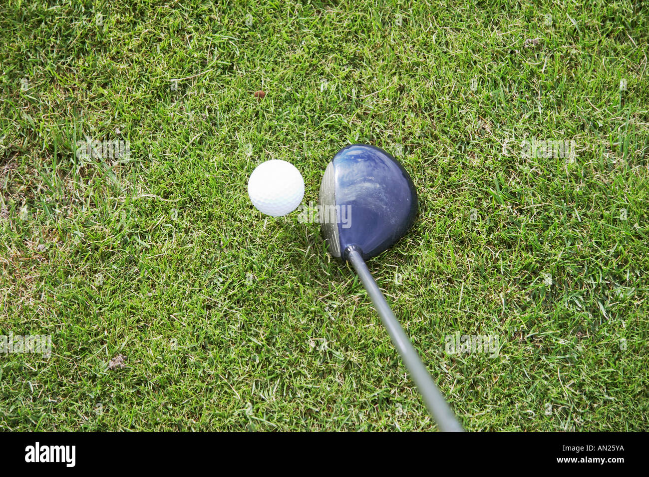 tee off and driving the golfball - Stock Image