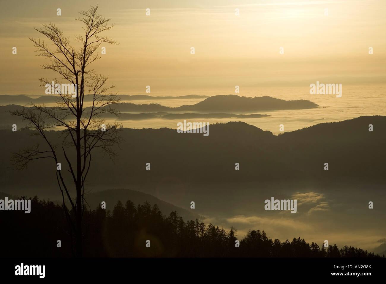 Sonnenuntergang an der Schwarzwaldhochstrasse Blick von der Hornissgrinde Schwarzwald deutschland germany europe Stock Photo