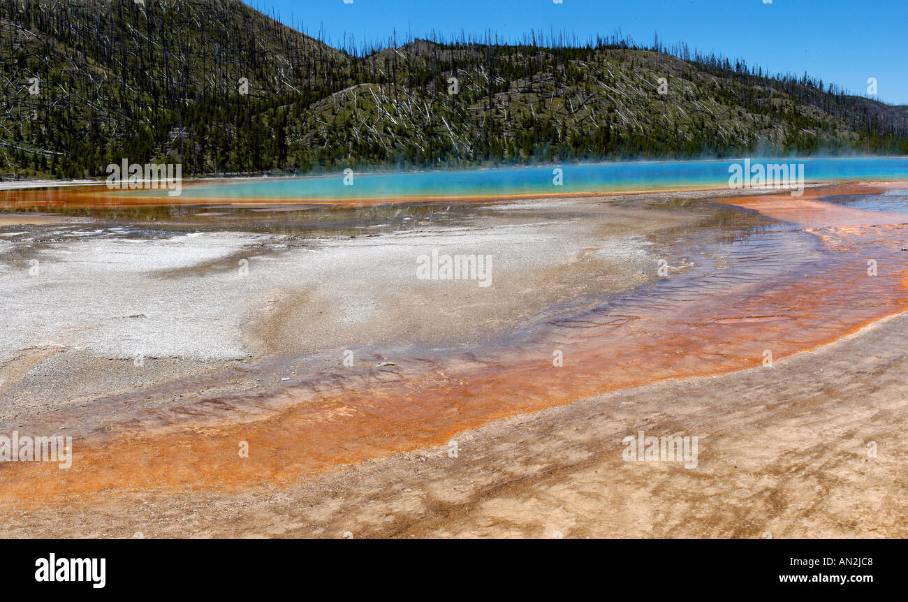 Grand Prismatic Spring Midway Geyser Basin Yellowstone National Park Wyoming USA - Stock Image