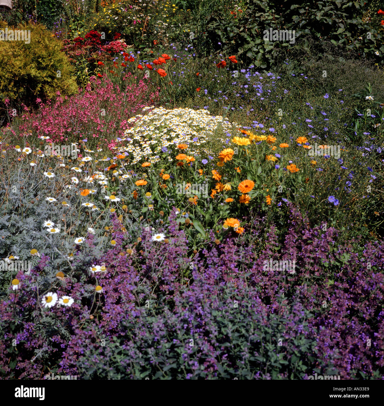 English country cottage garden Wiltshire England - Stock Image