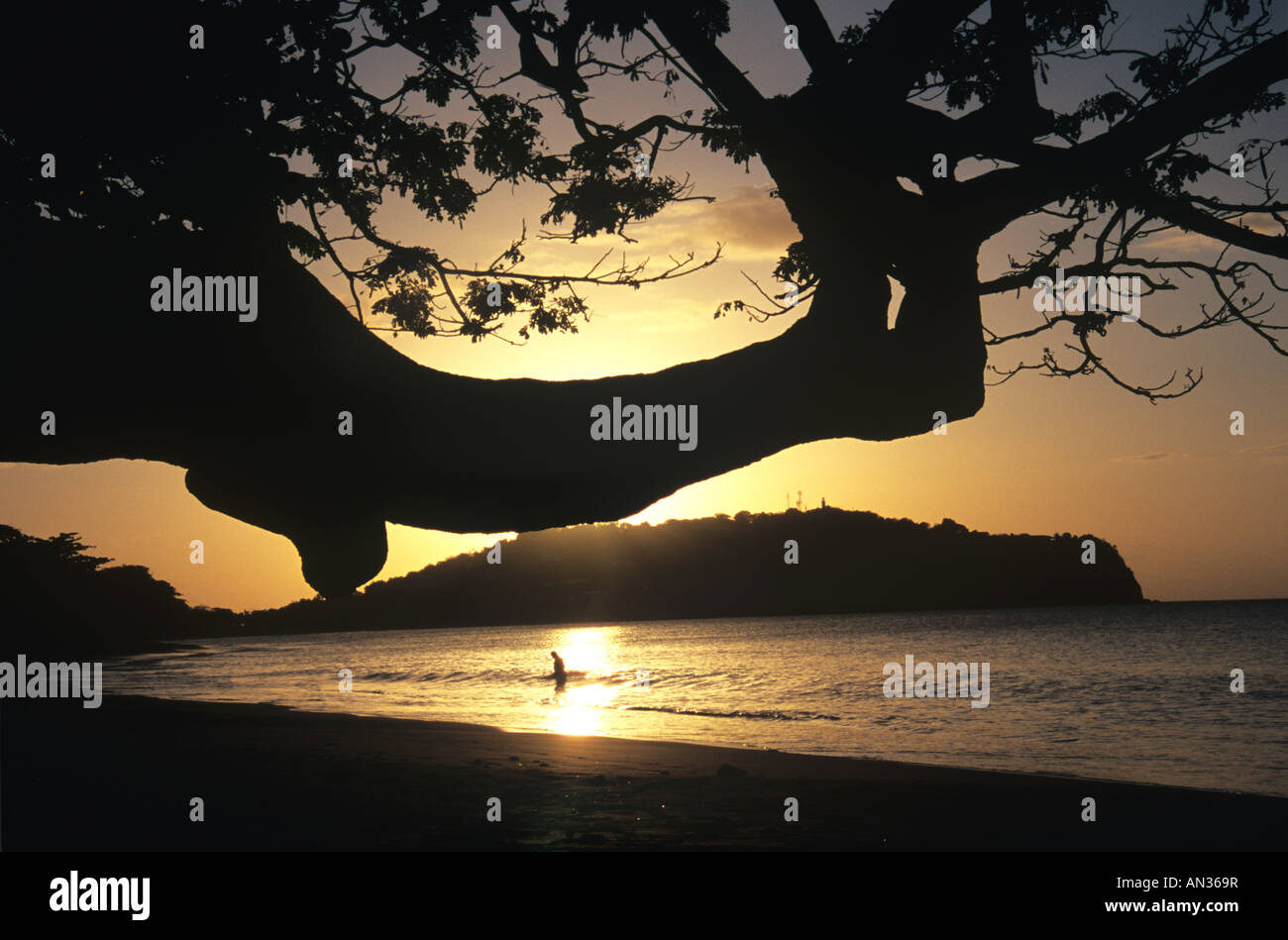 EVENING BATHER 1 - Stock Image
