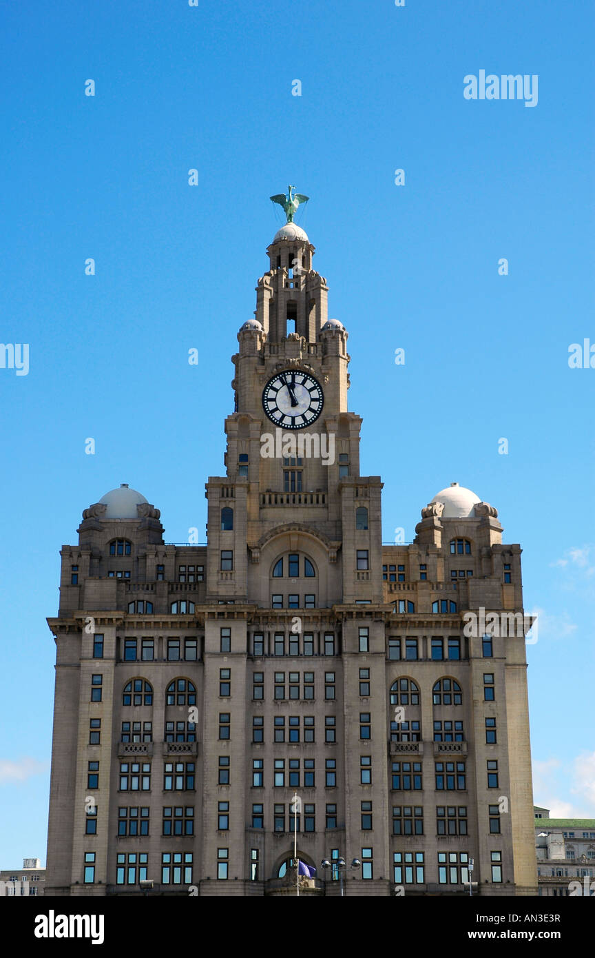 the liver building,liverpool Stock Photo