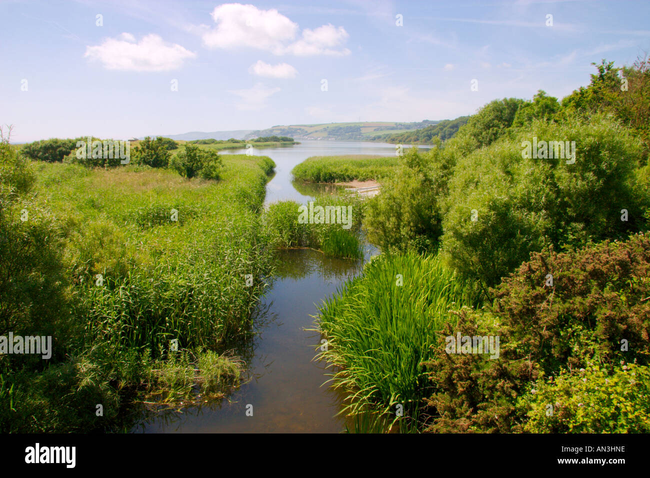 View of the Lower Ley Slapton UK - Stock Image