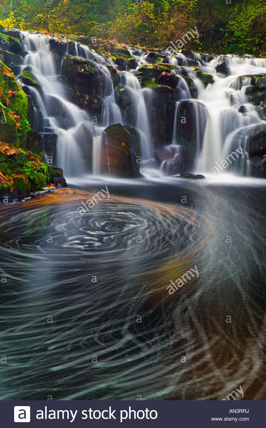 Fallen autumn leaves swirl in a vortex below Upper Beaver Creek Falls, west of Rainier, Oregon. - Stock Image