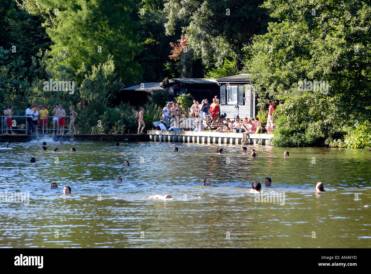 Swimmers at the mixed bathing pond on hampstead heath london stock photo 8803644 alamy for Hampstead heath park swimming pool